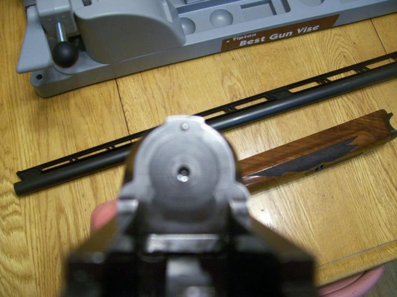 7771_2008_0303291.jpg