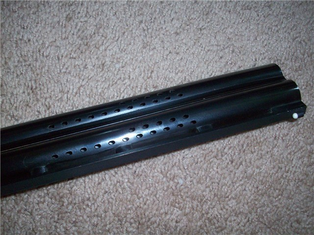 barrelbulge_2008_2108118.jpg