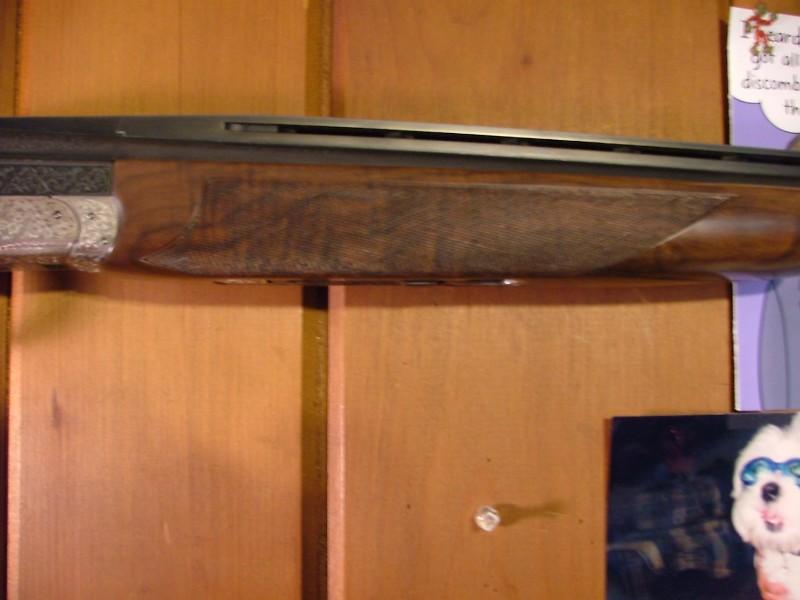 barrelbulge_2008_210824.jpg