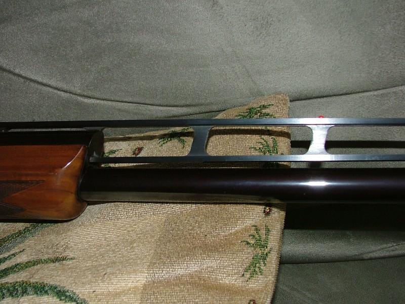 barrelbulge_2008_210898.jpg