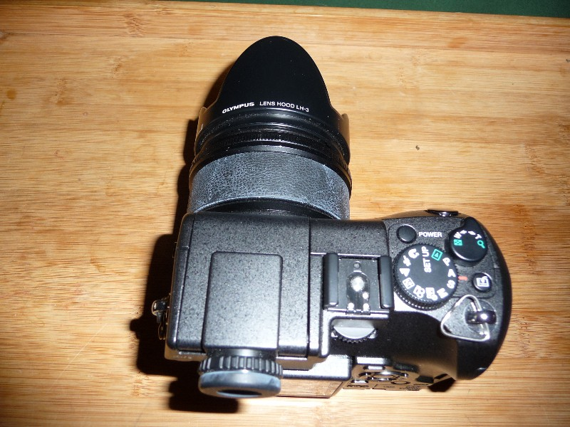bgf_2008_030325.jpg