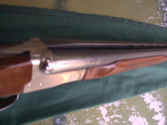 boomer_2008_03031429.jpg