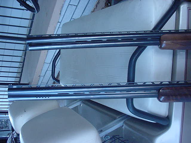 buckshot_2008_0303527.jpg
