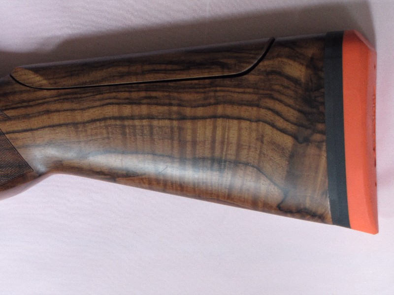 claybrdr_2008_0303314.jpg
