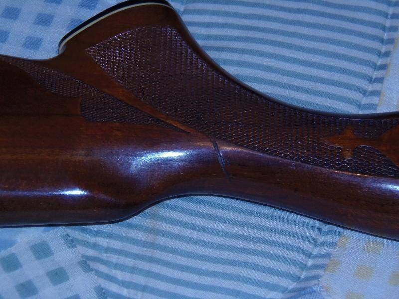 clayshooter25_2009_170412.jpg
