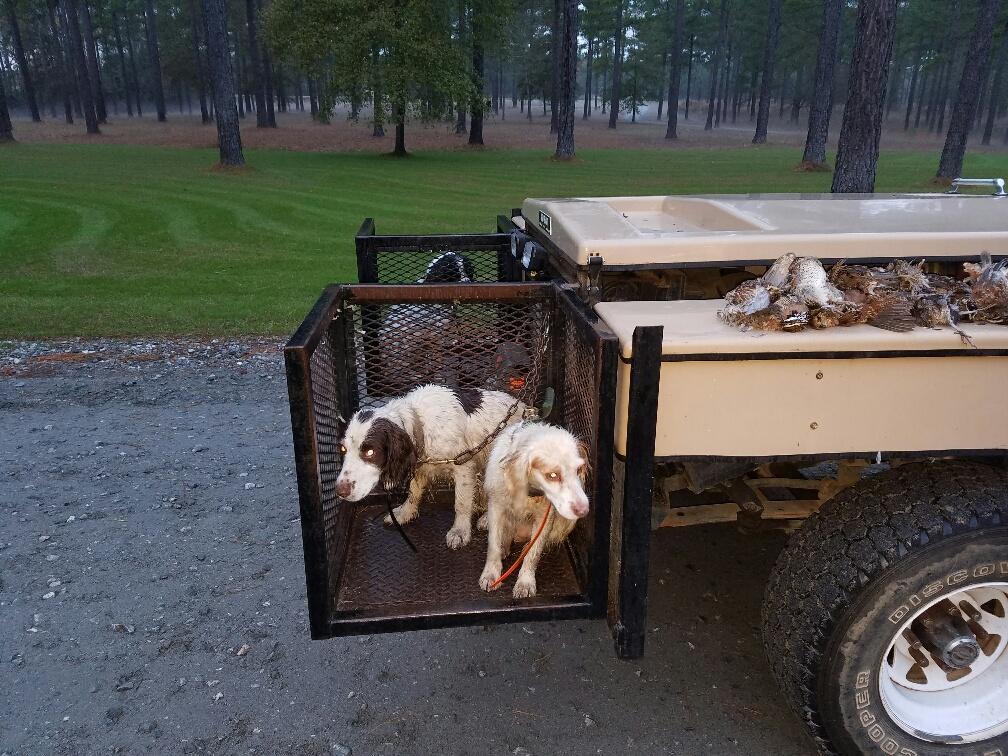flusher dogs 12-16.jpg