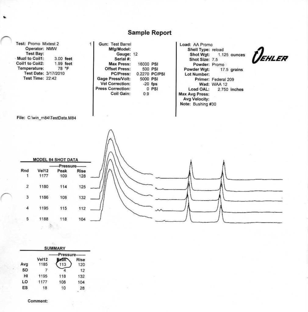 PromoPowder175grainscopy.jpg