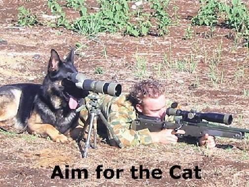 shooteriii_2008_03031.jpg