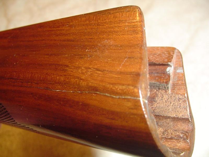 slugbug1_2008_0303157.jpg