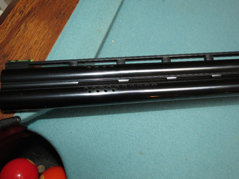 techman556_2008_03035.jpg
