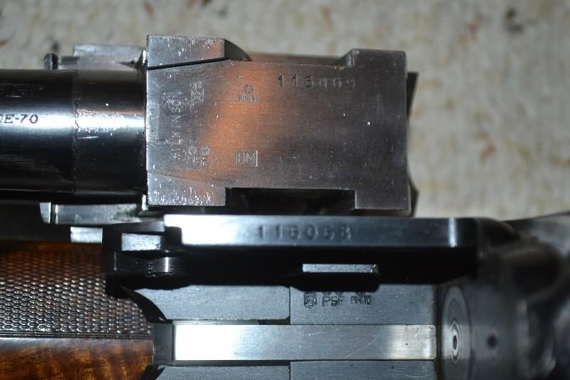 tstevens09_2008_030314.jpg