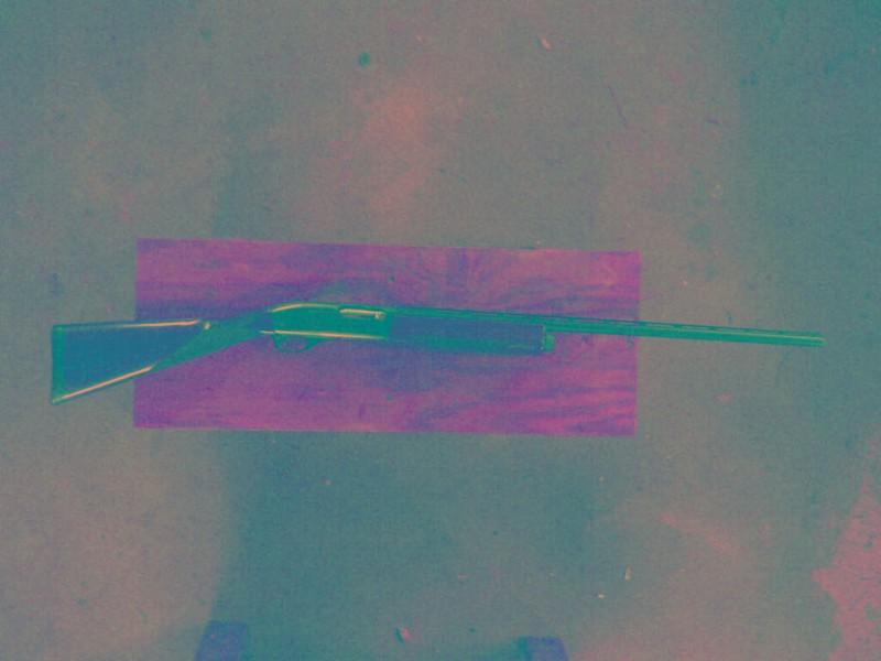willsweptline_2010_060614.jpg